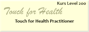 Icon_Kurs_Level_200_TFH_Practitioner