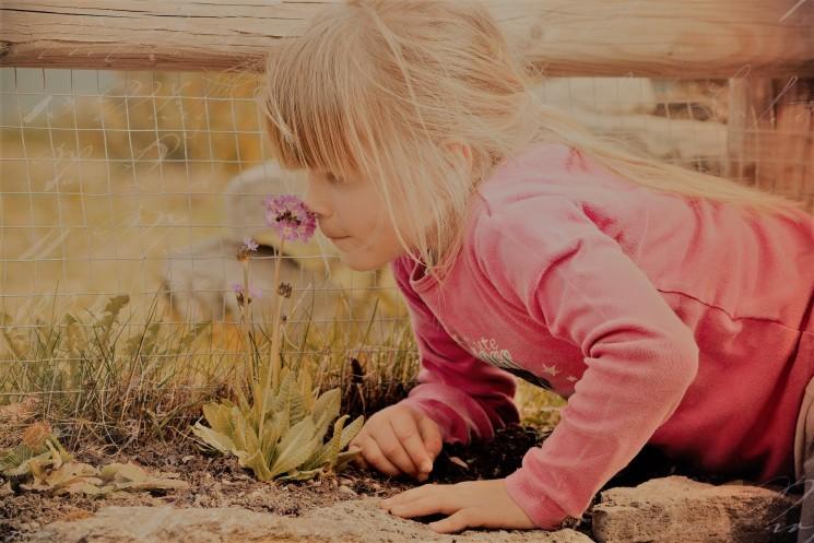 Mädchen riechen _child-645434_1920.jpg korr