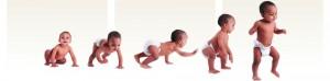 Grafik Baby Entwicklung