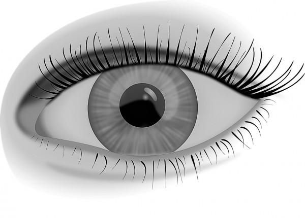 Visioncircles® Teacher Training / Amy Choi