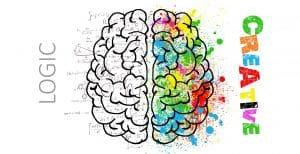 Ein persönlicher Erfahrungsbericht zum Kurs Optimale Gehirnorganisation